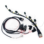 PHR Coil Wiring Harness for IGN1A Coils for MKIV Supra or SC300